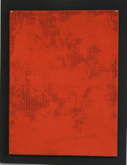 Bernard Aubertin, Monochromie Historique