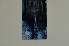 Johannes Haider, Wald